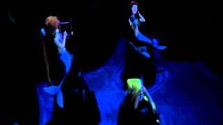東京ディズニーランド 「ピーターパン空の旅」(H23.11) Peter Pan's Flight (Amusement Ride)