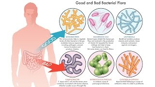Alleviating Anxiety And Depression With Probiotics #depression #anxiety #probiotic