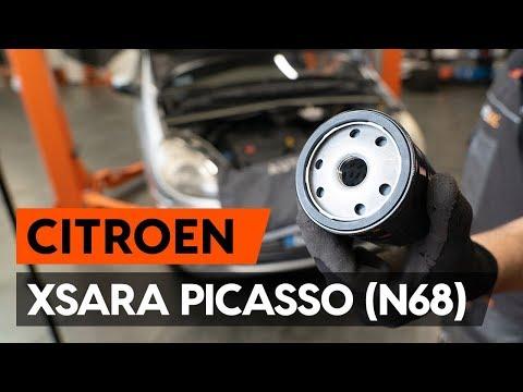 Как заменить моторное масло и масляный фильтр на CITROEN XSARA PICASSO (N68) [ВИДЕОУРОК AUTODOC]