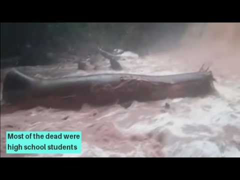 Ghana: At least 18 killed in waterfall tree collapse