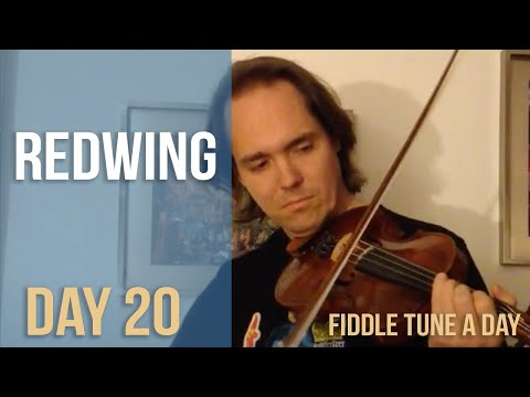 Redwing - Fiddle Tune a Day - Day 20