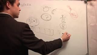 ЕГЭ математика В1.Видео урок онлайн.Поход