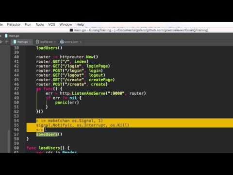 Golang Web App - Manual Database