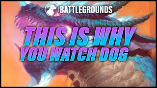 Insane Turn: Games Like This Are Why You Watch Dog | Dogdog Hearthstone Battlegrounds