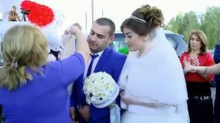 #Езидская Свадьба. 4 крутые торжества и 4 лучшие песни
