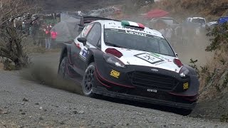 Day 3 - Rally Mexico 2017 - L. Bertelli / S. Scattolin - Ford Fiesta WRC+