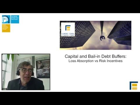 Capital and Bail in Debt Buffers: Loss Absorption vs Risk Incentives | Enrico Perotti