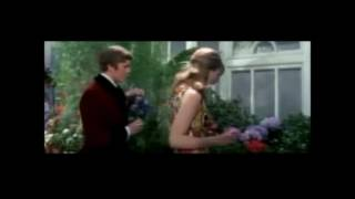 Herman's Hermits - Beautiful Thing In My Life