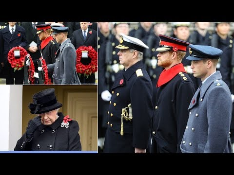 Prince Harry breaks military rules while at Remembrance Day parade by having a beard