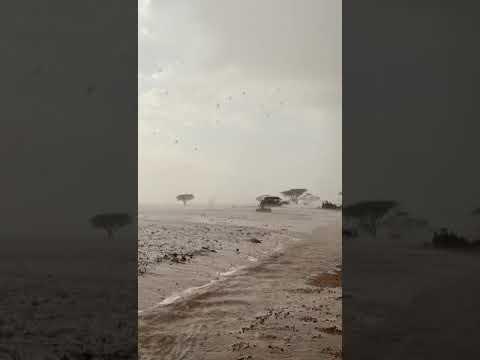 Heavy Rain KSA 15 December 2018
