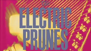 The Electric Prunes - Singles (1966 - 1969) Had Too Much To Dream
