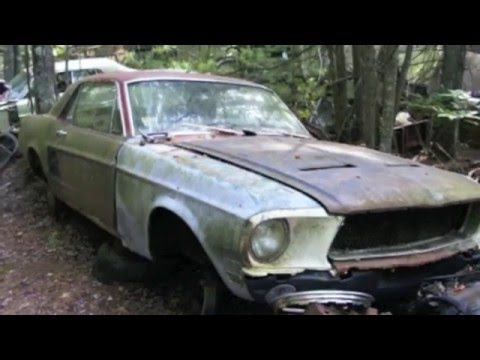 Forgotten Muscle Cars (plus a Surprise at the end!!)