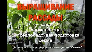 РАССАДА: сроки посева и предпосадочная подготовка семян #РАССАДА