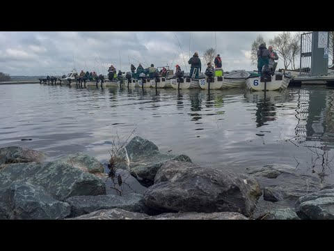 Rutland Reservoir - Fly Fishing - Spring Match