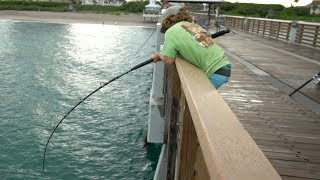 UNSTOPPABLE Fish....  (Juno Pier Snook Fishing)