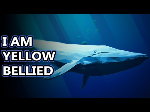 Blue Whale Facts: The Largest Animals... Like... Ever   Animal Fact Files