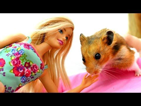 Барби играет с ХОМЯКОМ 🐹 Новый питомец: Хомяк! Домашние Животные #дляДетей 🌾 Мультик Барби
