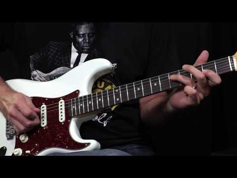 Fender Custom Shop 2017 Collection Wildwood 10 Postmodern Strat Lush Closet Classic  •  SN: XN1715