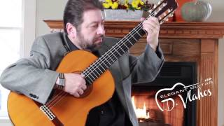 Elegant Guitar - Denny Vlahos