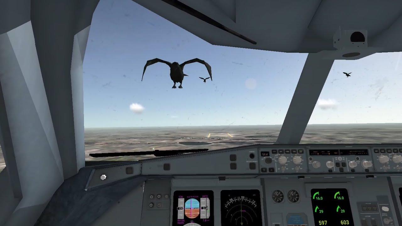 A330 BIRD STRIKE