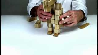 Learn How To Construct Gonzo From The Muppets - Magnetic Building From Tegu