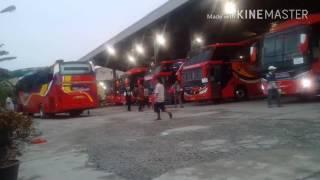 Kesibukan Di Terminal AKAP Amplas Medan  ||  Part III || Pak Tampubolon