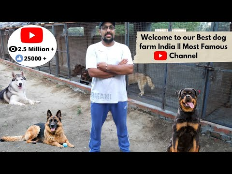 Welcome to Our Farm - Harwinder Singh Grewal and Farm - Bhola Shola