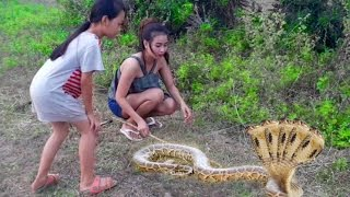 Woow!! Brave Cute Girls Catch Village snake | Beautiful girls Catch Water Snake​ near farm