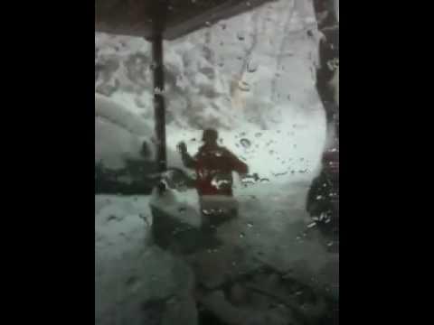 Snowballs on the window