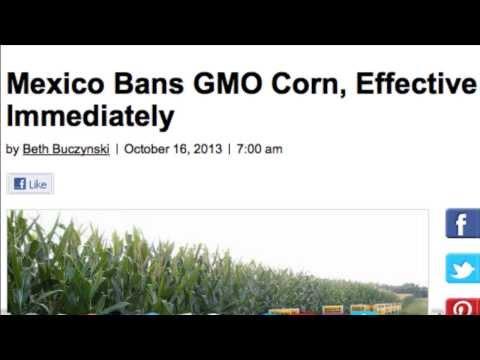 NON-GMO DIET
