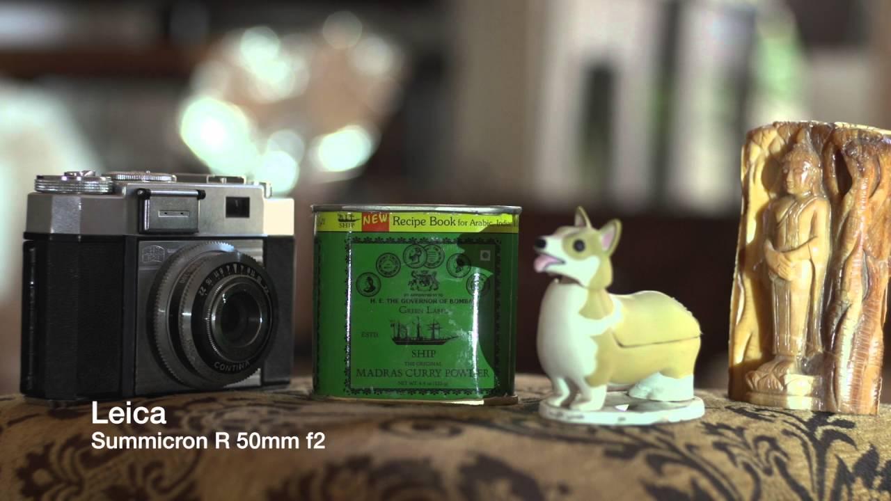 Zeiss Lens vs Leica Lens: Which Brand is Better? - 2Bridges
