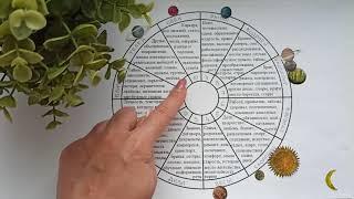 РАК гороскоп на ноябрь 2020 года
