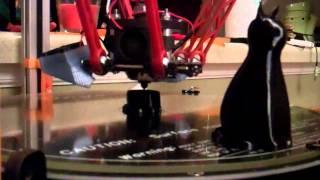 Rostock Max 3D Print Lucycat ( start  finish )