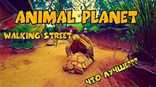 Тайланд пятая серия зоопарк Animal Planet Walking street овечья ферма