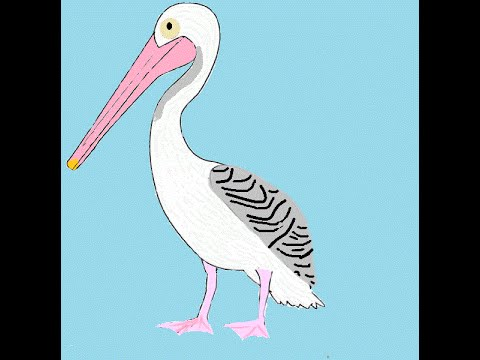 El video del ave pelicano y sonidos animados youtube - Fotos de pelicanos ...