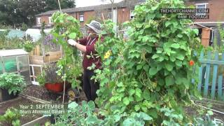 End of the Runner Beans | RAW FOOTAGE