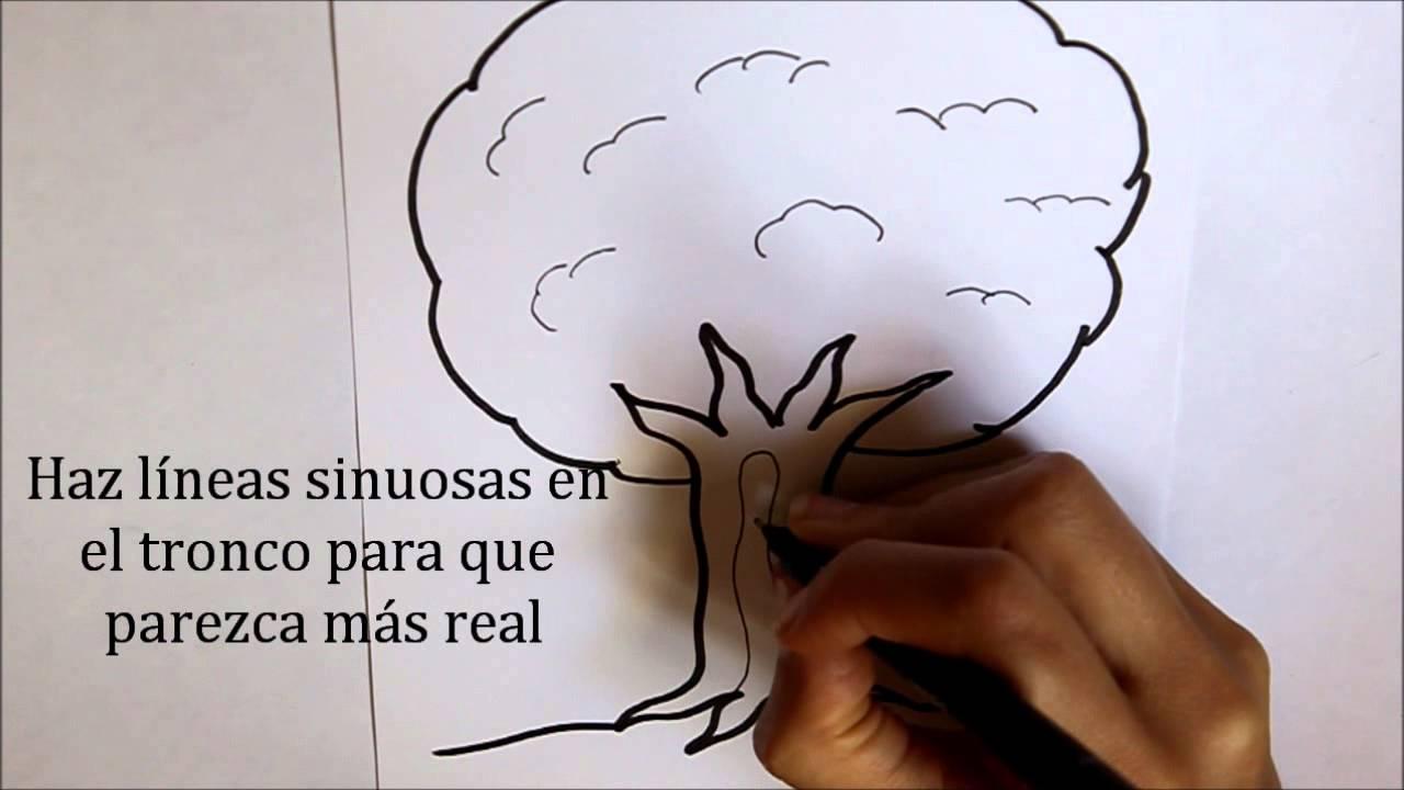 Cómo Dibujar Un árbol Dibuja Conmigo Dibujos De Naturaleza