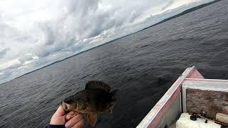 #Карелия#Рыбалка#Палатка#Снегирь4ТЛонг#Хариус#Окунь Рыбалка которую планировал, всё получилось.