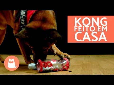 Brinquedo De Garrafa Pet Para Cachorro - Kong Caseiro