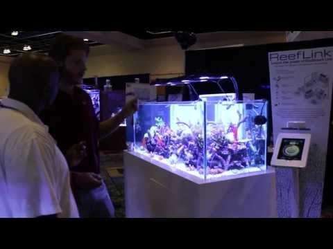 MACNA 2013 - DAY 2 - MACNA Interactive by ThomasVisionReef