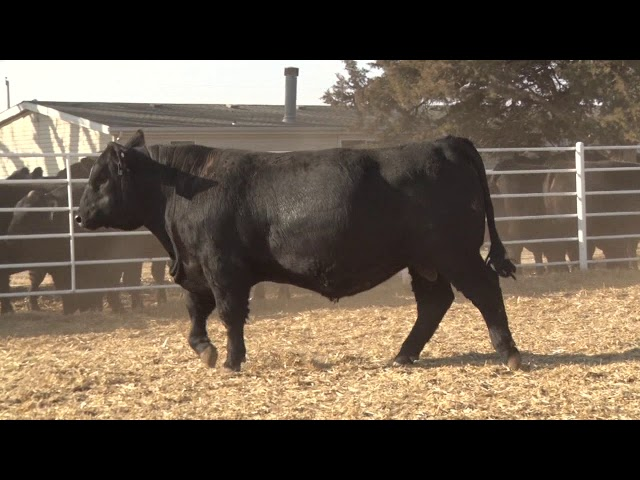 Express Ranches Lot 287