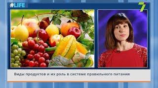 Виды продуктов и их роль в системе правильного питания