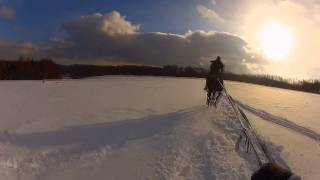 Snowboard za koniem Stadnina Koni Runowo