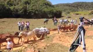 Desfile de carros de boi Bichinho / Prados MG 5