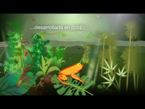 Spanish Language - Neotropical Biodiversity: Ecuador's first Open Access journal