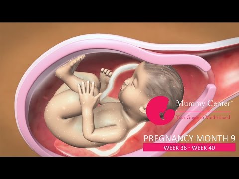9th Month of Pregnancy –Definitive Guide For Pregnancy Month 9 | Week(36,37,38,39,40) | Mummy Center