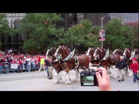 WORLD SERIES VICTORY PARADE - St. Louis Cardinals