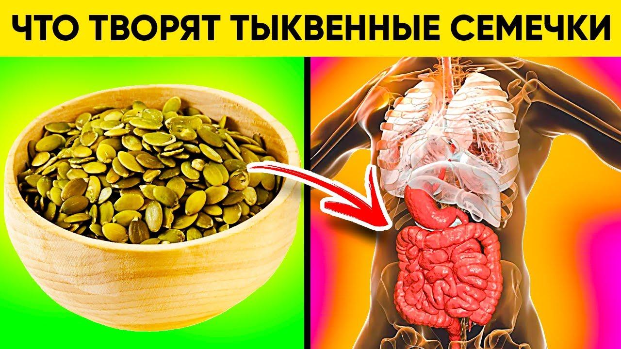 Реальная польза и вред семечек тыквы.
