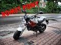 Romet Pony 50 Monster 2016r... mini Ducati :)  prezentacja