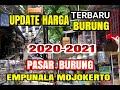 Update Harga Terbaru  Pasar Burung Empunala Mojokerto  Mp3 - Mp4 Download